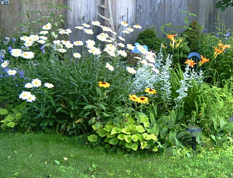 Fence flower bed