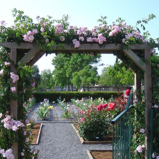 Luther Burbank Art and Garden Center |