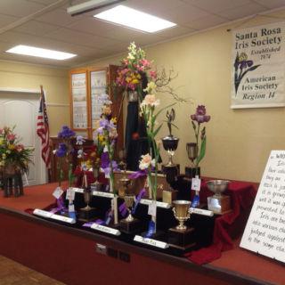 Iris Trophy Winners