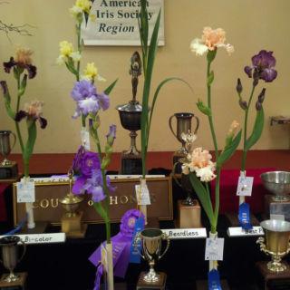 Iris Trophies