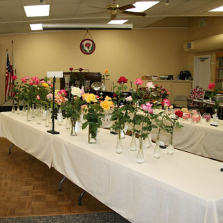 Flower Show Tables